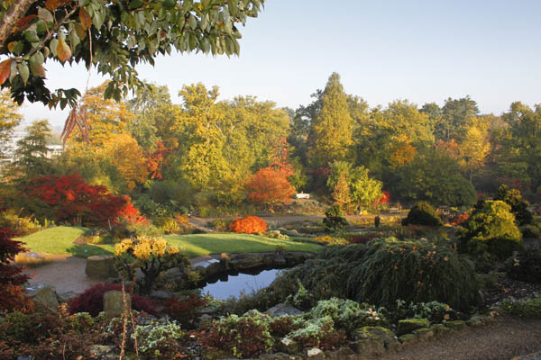 Wisley, the flagship garden of the Royal Horticultural Society   www.rhs.org.uk  © RHS Images